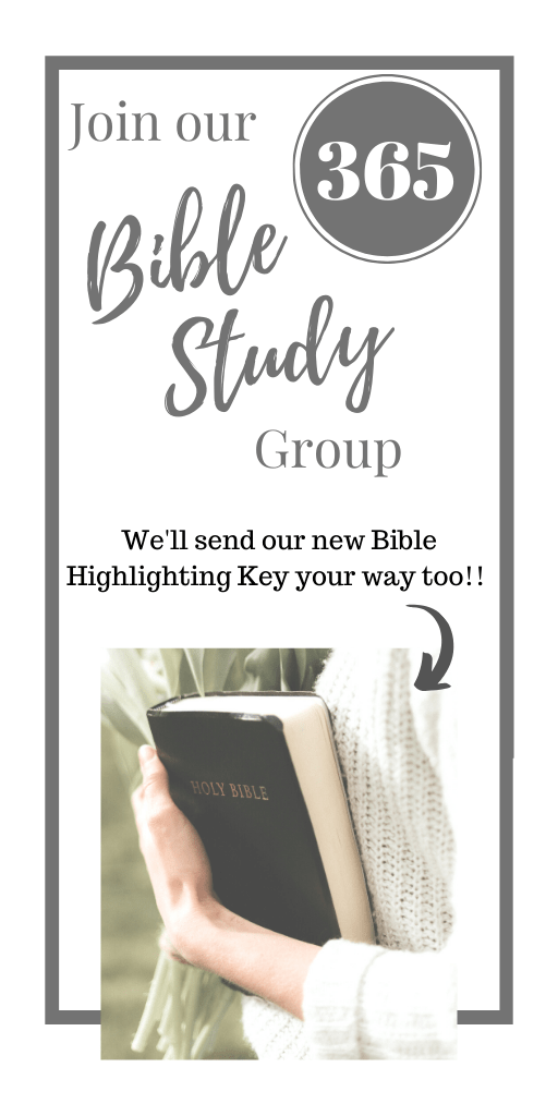 Join our 365 Bible Study Group on Facebook! http://www.facebook.com/groups/lacedwithpurpose @mrslotanner #lacedwithpurpose
